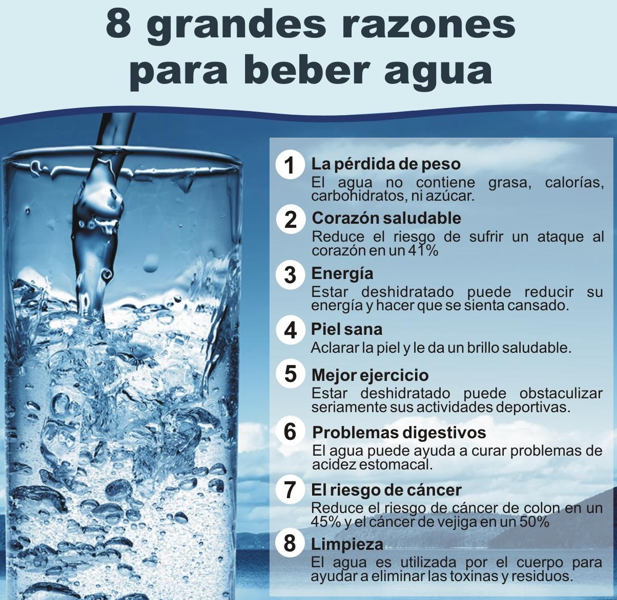Resultado de imagen para dieta del agua